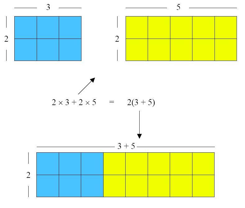 7 2 3 Numerical And Algebraic Expressions Scimathmn