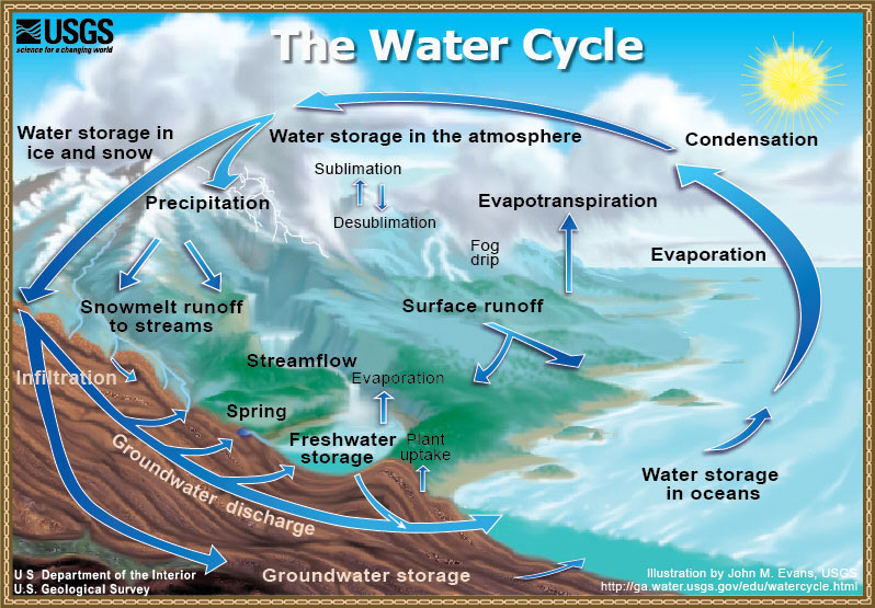 4.3.2.3 The Water Cycle | SciMathMN