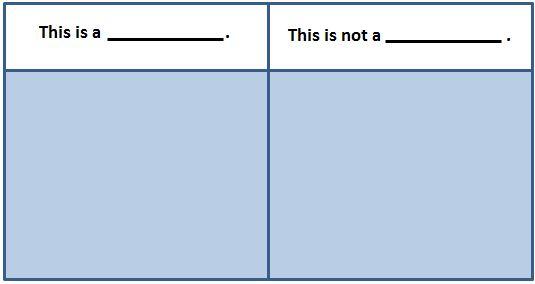 example / non example